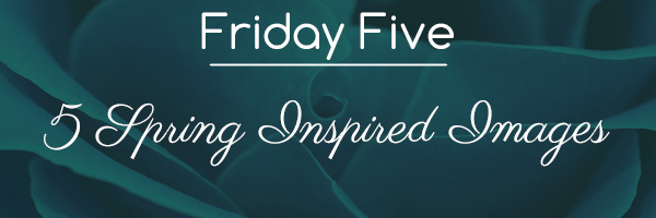 Friday-Five-Blog-02-12